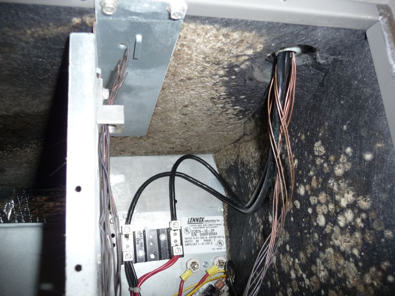 The Home Inspector: Does Your Inspector Open Up the Air ...